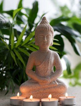 בודהיזם ומיינדפולנס